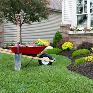 Horticulture Basically Deals With The Art, Science, Technology, And  Business Of Growing Plants. With Experience Of Plant Selection, Design,  Maintenance And ...